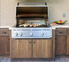 Patio Grills Built In Grills Gas Barbecue Premium Grills Willowbrook Il