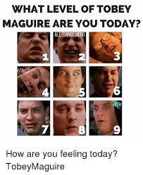 Meme Tobey Maguire - what level of tobey maguire are you today all things hero 1 2 2 5