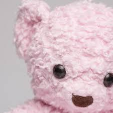 sherpa bears bears for humanity