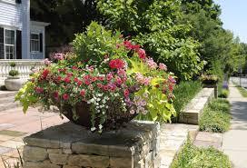 container gardening tips gardening ideas