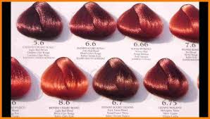 Argan Oil Hair Color Chart Hair Colour Chart 7 New Hair Style Collections