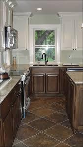 Painting Kitchen Cabinets Cost Kitchen Kitchen Cabinet Refacing Dark Kitchen Cabinets Staining