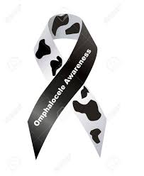 cow print ribbon cow print ribbon omphalocele awareness stock photo picture and