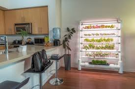 opcom farm makes indoor gardening as easy as plant pick and plate