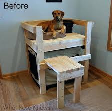 Doggie Bunk Beds Bunk Beds Pet Bunk Beds Uk Startupselfie Co