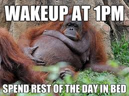 Lazy Day Meme - monday update lazy weekend edition lifewithlilred