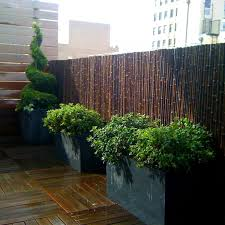 Black Bamboo Fencing Hides An Ugly Metal Fence A Rooftop Garden