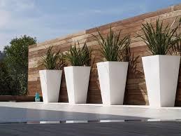 contemporary best 25 contemporary planters ideas on pinterest contemporary