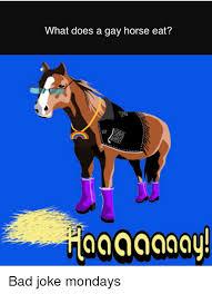 Gay Horse Meme - 25 best memes about gay horse gay horse memes