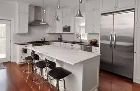 Family Kitchen Design by Bucktown Single Family Kitchen U2014 Nicholas Moriarty Interiors