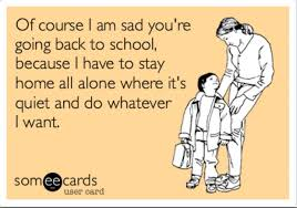 I Hate School Meme - yes i admit it i hate soft play centres but i bet you i will still go