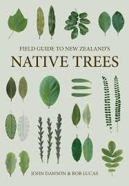 field guide to new zealand u0027s native trees