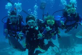 how to get started with a career in diving u2013 great barrier reef jobs