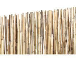 balkon sichtschutz hornbach sichtschutzmatte bambusstab 500 x 200 cm bei hornbach kaufen