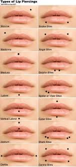 piercing lip rings images Lip piercings guide which one should you get jpg