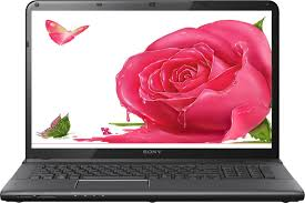 Red Flag Linux Sony Vaio Sve1513cynb Laptop 2nd Gen Ci3 2gb 320gb Red Flag