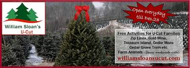 sloan nursery u0026 christmas trees home facebook