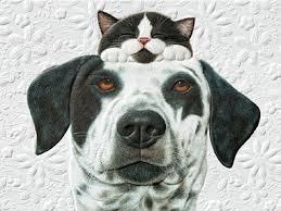 pumpernickel cards pals pet lover birthday greeting cards