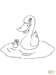 baby birds coloring pages angry shower pictures bird transport