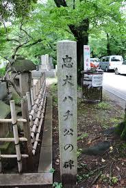 Princeton Cemetery Hachiko U0027s Grave Travel Pinterest Akita Dog Akita And Dog Cat