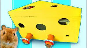diy hamster maze cardboard house for hamster rat u0026 mouse