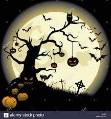 halloween backdrop cross halloween horror pumpkin celtic but pussycat cat domestic