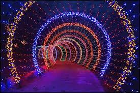 Botanical Garden Atlanta Lights Botanical Gardens Christmas Lights 30 This Botanical Gardens