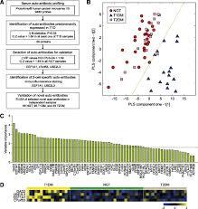 identification of novel autoantibodies in type 1 diabetic patients