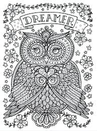 for adults owl coloring pages for adults free detailed owl coloring pages