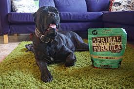 dog food and feeding archives u2013 walks with rama