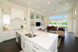 Kitchen Countertop Cabinets 45 Luxurious Kitchens With White Cabinets Ultimate Guide