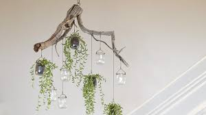 Cascading Chandelier by Homelife How To Make A Cascading Plant Chandelier