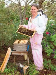 the bee u0027s knees the buzz magazines