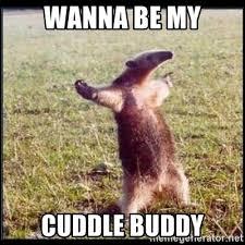 Cuddle Buddy Meme - wanna be my cuddle buddy oso hormiguero thug meme generator
