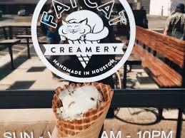 houston u0027s 15 essential ice cream shops