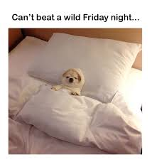 Friday Night Meme - can t beat a wild friday night meme on sizzle