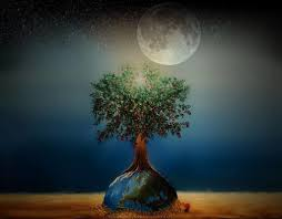 the tree of knowledge journey of the mind