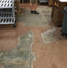 Commercial Kitchen Flooring Options Commercial Vinyl Flooring Vs Everlast Epoxy Flooring