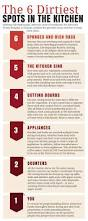 Bacteria In Kitchen Sink - infographic the 6 dirtiest spots in your kitchen toilet