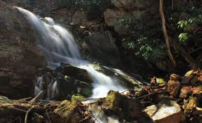 New Jersey waterfalls images These 12 hidden waterfalls in new jersey will take your breath jpg