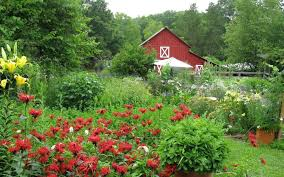 get a free organic farm in north carolina for writing a 200 word