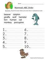 149 best mammal unit images on pinterest wild animals diy and