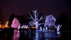 when does the lights at the toledo zoo start toledo zoo lights before christmas 2012 dancing lights display