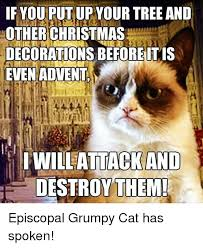 Grumpy Cat Memes Christmas - if you put up your tree and other christmas decorations be fore it