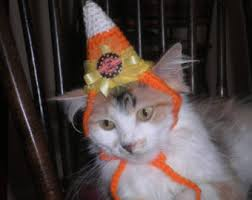 Ferret Halloween Costumes Cat Dog Apple Hat Halloween Costume Party Hat Crocheted