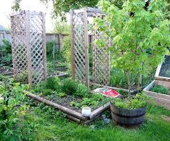 how to design vegetable garden marvellous small space vegetable garden design garden mybktouch