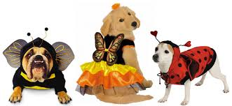 Extra Large Dog Costumes Halloween Dog Halloween Costumes Favorite Funny Small