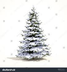 christmas tree with snow snow covered christmas tree on white stock illustration 594889934