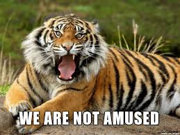 Tiger Meme - tiger nope meme meme on imgur