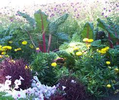mountain gardening ornamental edibles add delicious touch